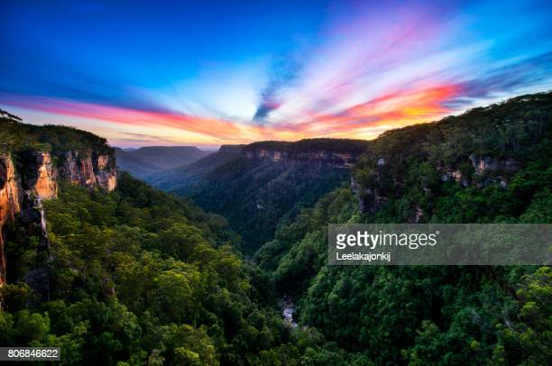 sunset from fitzroy falls - kangaroo stock pictures, royalty-free photos & images