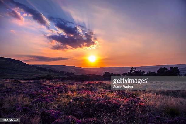 Sunset Ilkley Moor