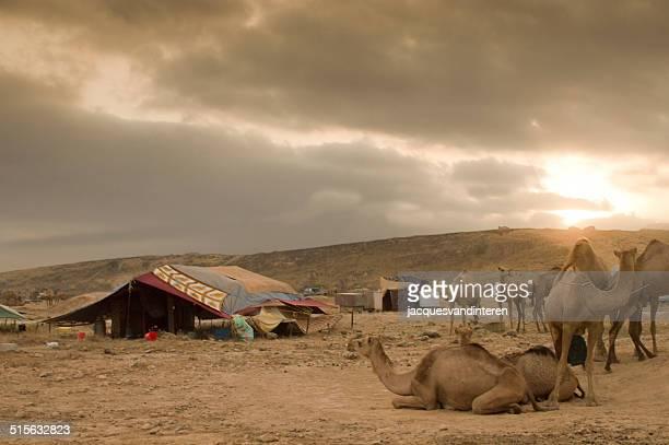 Sunset in a Bedu camp