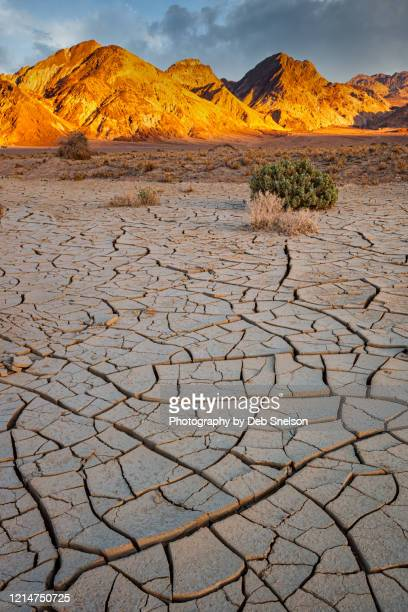 sunset in badwater basin mudcracks death valley national park - death valley photos et images de collection
