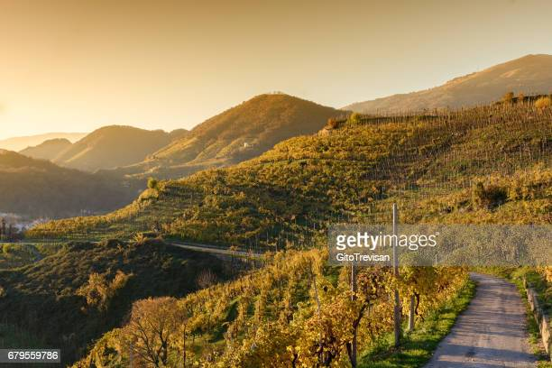 sunset in farra di soligo,land of prosecco wine - veneto stock pictures, royalty-free photos & images