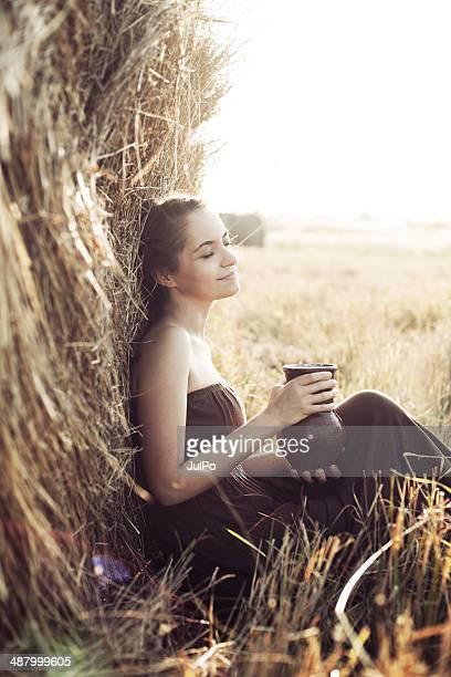 Coucher de soleil dans le champ