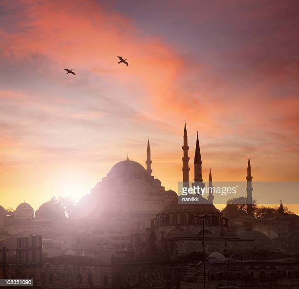 sunset in istanbul - mosque stock pictures, royalty-free photos & images