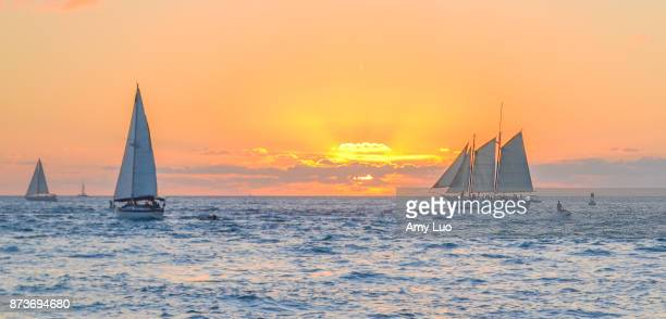 sunset in key west, florida, usa - key west stock photos and pictures