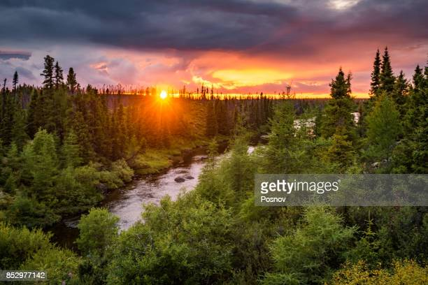 sunset in labrador boreal forest - newfoundland and labrador stock pictures, royalty-free photos & images
