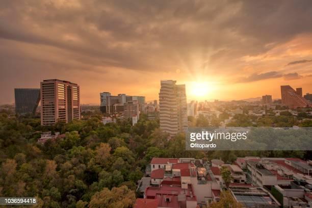 sunset in polanco mexico city - ciudad de méxico fotografías e imágenes de stock
