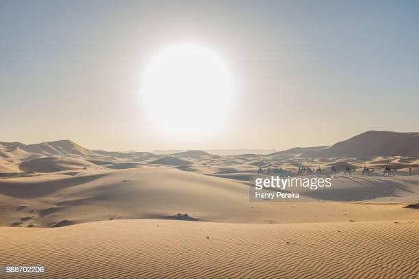Sunset in Sahara