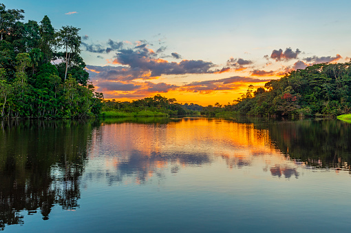 Sunset in the Amazon Rainforest River Basin 984498052