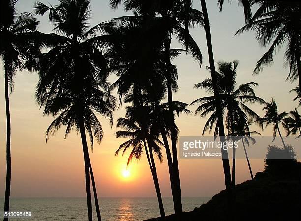 Sunset in the beach of Palolem, Goa, India