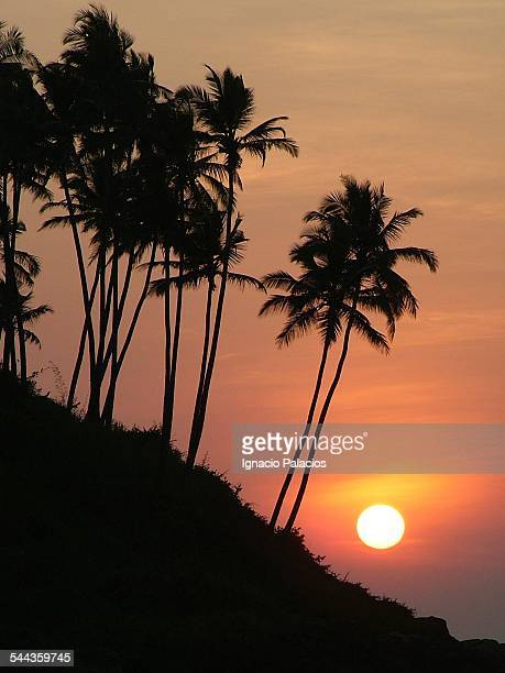 Sunset in the beach of Palolem