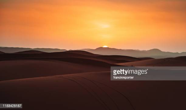 sunset in the desert - nature reserve stock pictures, royalty-free photos & images