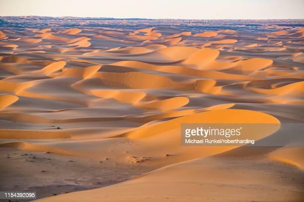 sunset in the giant sand dunes of the sahara desert, timimoun, western algeria, north africa, africa - アルジェリア ストックフォトと画像
