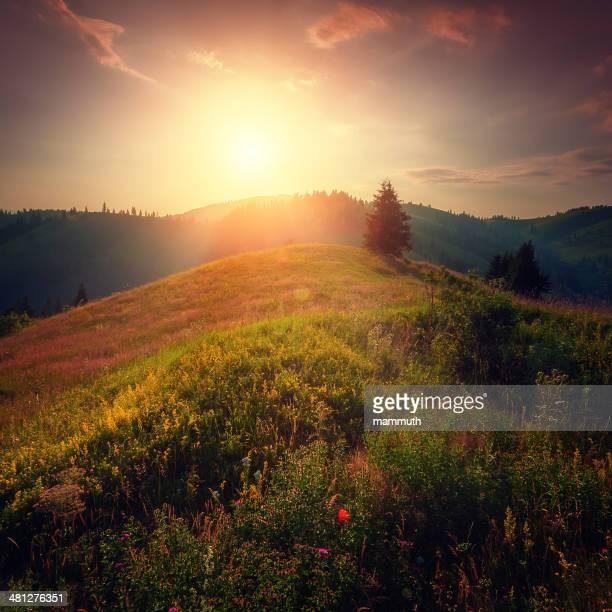 sonnenuntergang in den bergen - siebenbürgen stock-fotos und bilder
