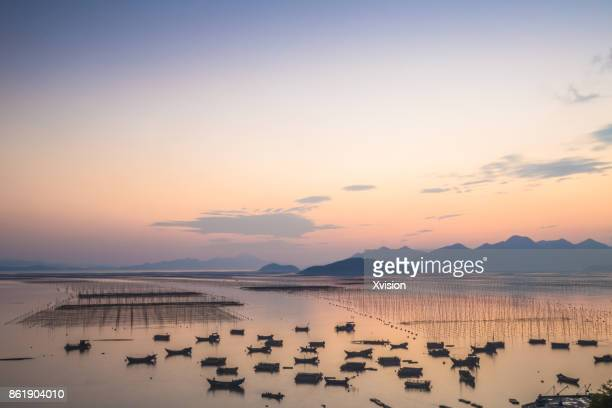 sunset in the sea with lots of boats in xiapu - nori stock pictures, royalty-free photos & images