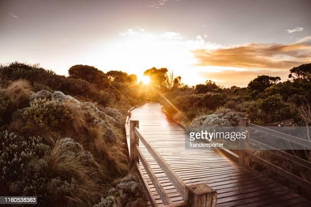 ビクトリア自然の田園地帯の夕日 - オーストラレーシア ストックフォトと画像