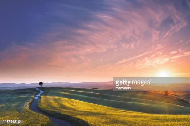 sunset in tuscany, italy - sentiero foto e immagini stock
