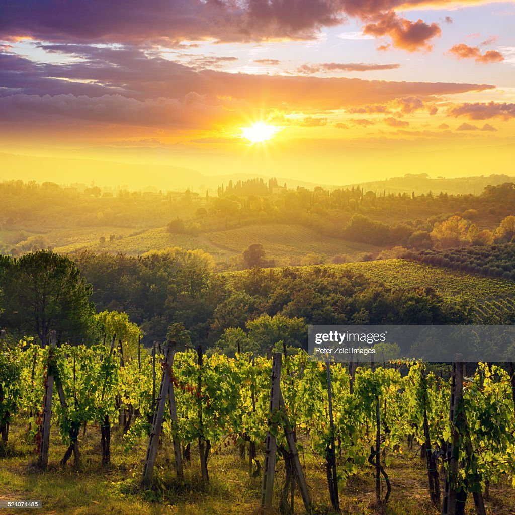 Sunset in Tuscany : Stock Photo
