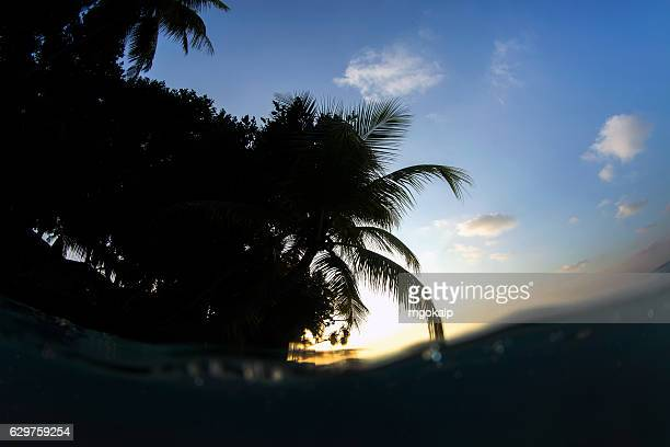 sunset in vilamendhoo island - vilamendhoo stock photos and pictures