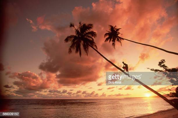 sunset in western samoa - samoa stock pictures, royalty-free photos & images