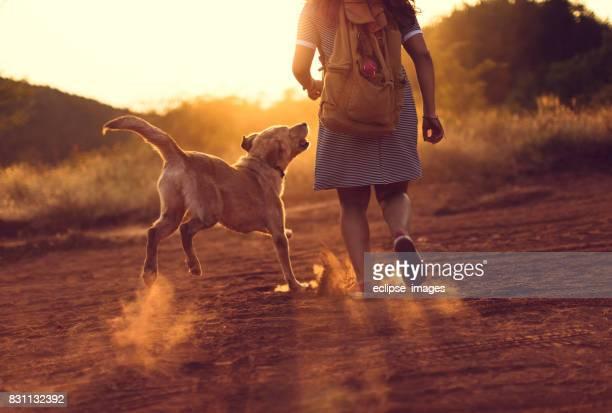 Zonsondergang joggen met de hond.