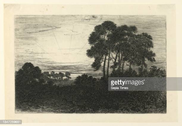 Sunset, John Charles Robinson, British, 1824 - 1913, Etching on mulberry paper, Landscape at sunset. Bushes in foreground; trees at right foreground...