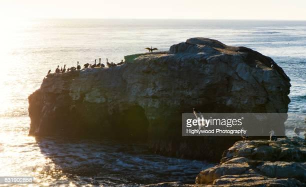 sunset landing - highlywood fotografías e imágenes de stock