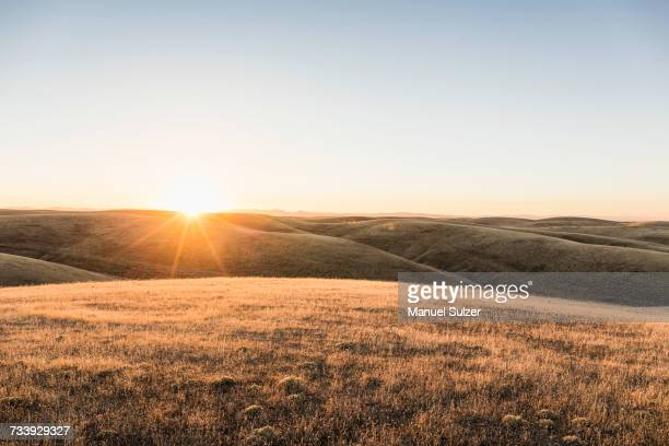Sunset landscape view of rolling prairie hills, Bakersfield, California, USA