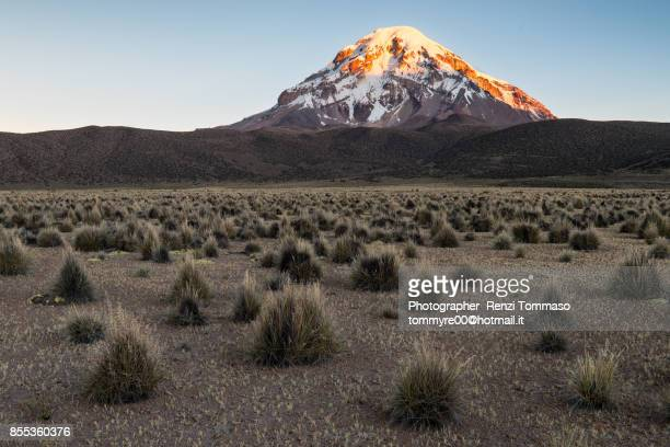 Sunset light on Sajama mountain, Bolivian Altiplano