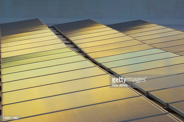 Sunset light on solar panels