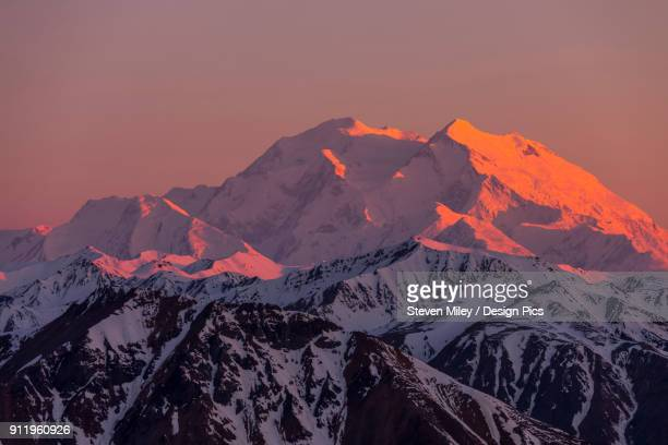 sunset lights up denali, viewed from a ridge near polychrome mountain in denali national park - miley fotografías e imágenes de stock