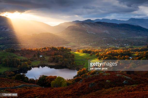 sunset, loughrigg tarn, ambleside, lake district, cumbria, england - sunset stock pictures, royalty-free photos & images