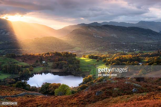 sunset, loughrigg tarn, ambleside, lake district, cumbria, england - lake district stockfoto's en -beelden