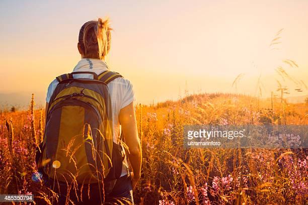 Pôr do sol paisagem montanha meados Adulto mulher caminhada Granadilha Prado alpino