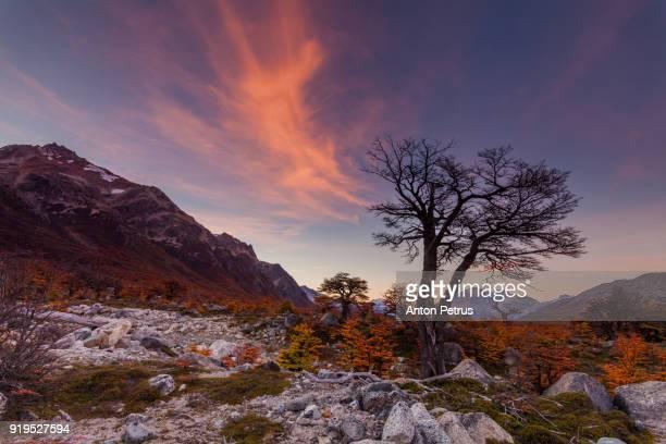 Sunset near Mount Fitz Roy. Patagonia, Argentina