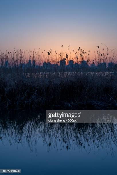 sunset of  the Daming lake