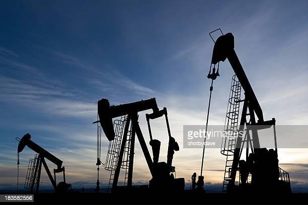 Sunset Oil Derricks
