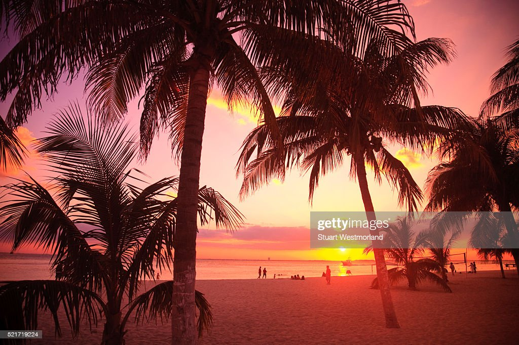 Sunset on beach on Isla Mujeres : Stock Photo