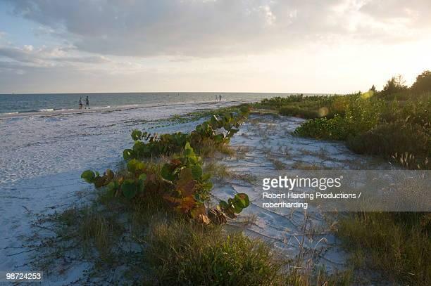 Sunset on beach, Sanibel Island, Gulf Coast, Florida, United States of America, North America