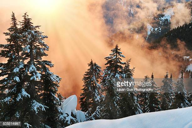 sunset on dam mountain - grouse mountain stock photos and pictures