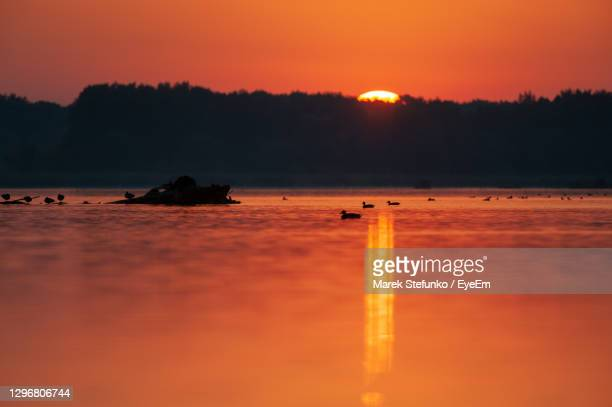 sunset on danube river in slovakia - marek stefunko stock pictures, royalty-free photos & images