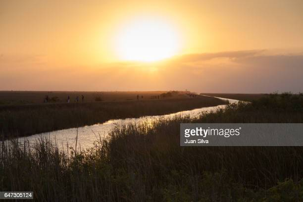 sunset on everglades national park - coral springs stock pictures, royalty-free photos & images