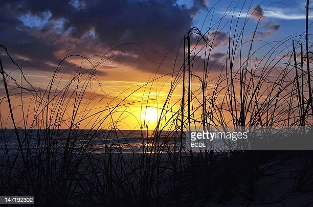 sunset on manatee beach - anna maria island stock pictures, royalty-free photos & images