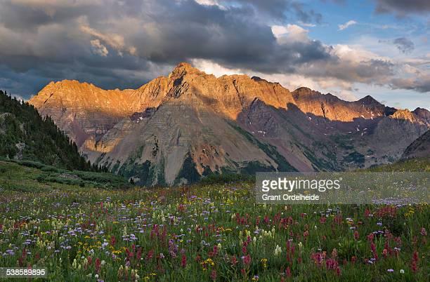 Sunset on Pyramid peak and a field of wildflowers near Aspen Colorado.