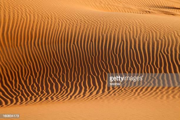 Sunset on sand dunes in Dubai, United Arab Emirates