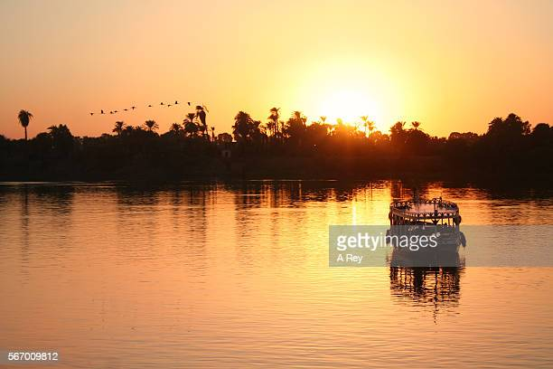 sunset on the banks of the nile - ナイル川 ストックフォトと画像