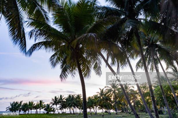 sunset on the caribbean sea - port au prince stock pictures, royalty-free photos & images