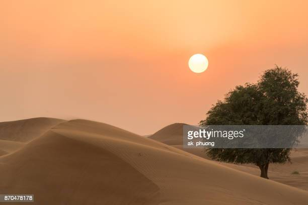 Sunset on the desert at UAE