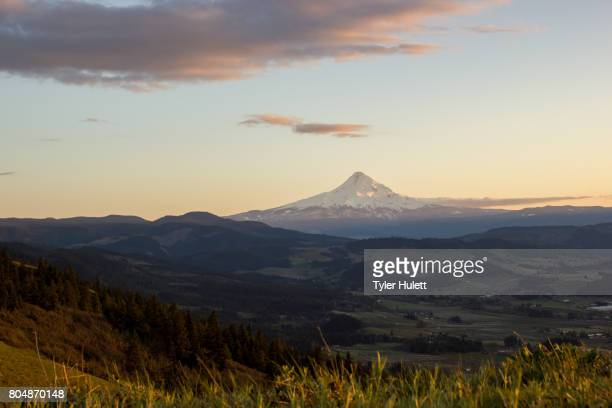 Sunset on the Hood River Valley and Mt. Hood from Surveyor's Ridge