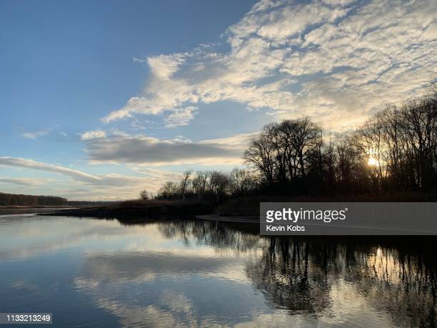 sunset on the island ziegenwerder in frankfurt (oder), brandenburg, germany. - schattig stock pictures, royalty-free photos & images