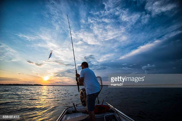 sunset on the lake - fishing hook stock pictures, royalty-free photos & images